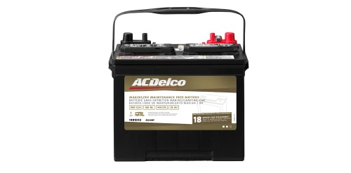 ACDelco Gold Marine and RV Battery with 18-Month Warranty